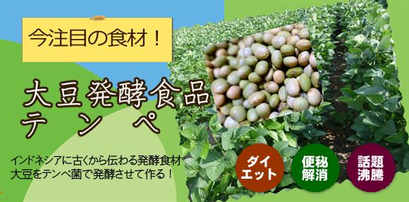 テンペは大豆発酵食品です