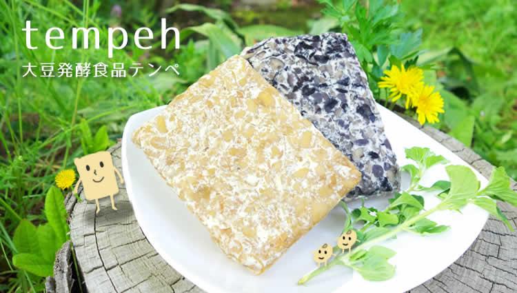 大豆発酵食品テンペ